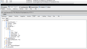 Fiddler (w/JSON Viewer) display of REST GET Request of AGS